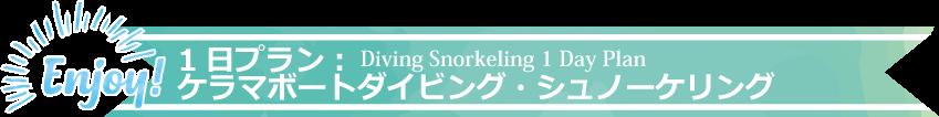 1日プラン:ケラマボートダイビング・シュノーケリング