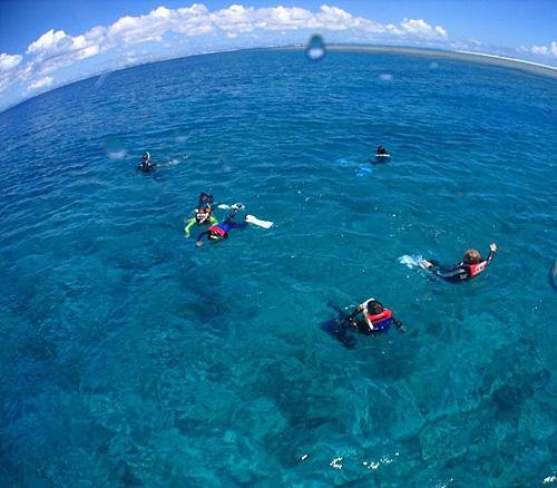 ケラマ諸島ボートシュノーケリング:半日プラン:約4時間